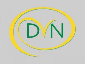 logo DVNutrition