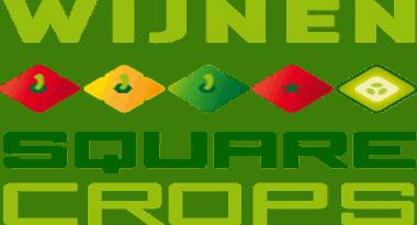 Wijnen Square Crops