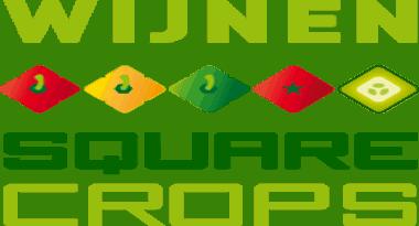 logo_wijnen square crops