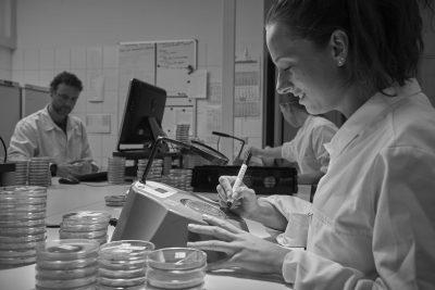 microbiologische analyse