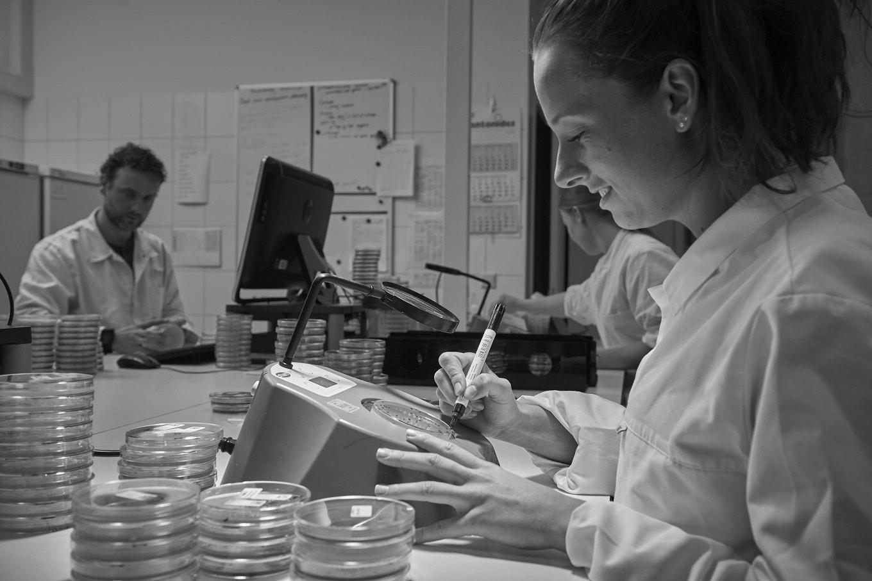microbiologische-analyse