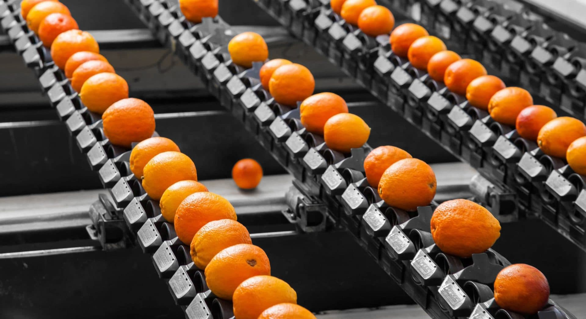 banner sinaasappels