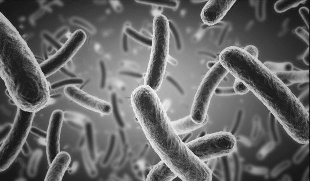 Legionella beheersplan