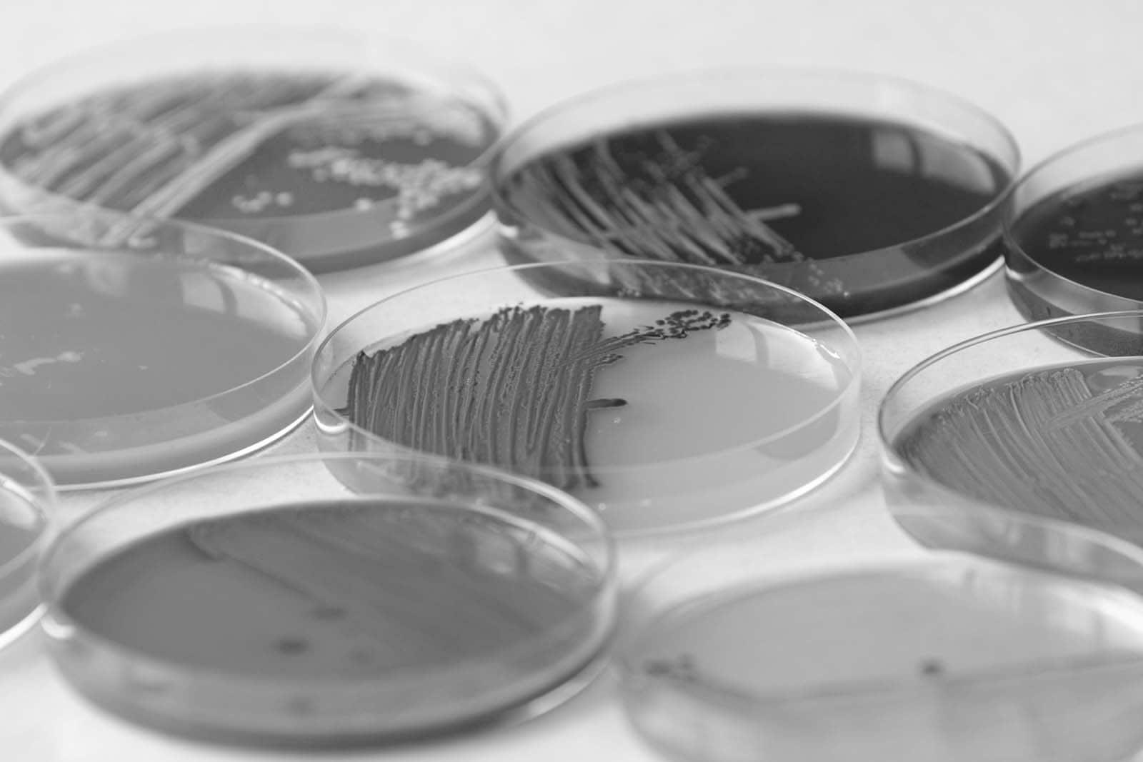 Werkzaamheidstesten-Biociden(1)