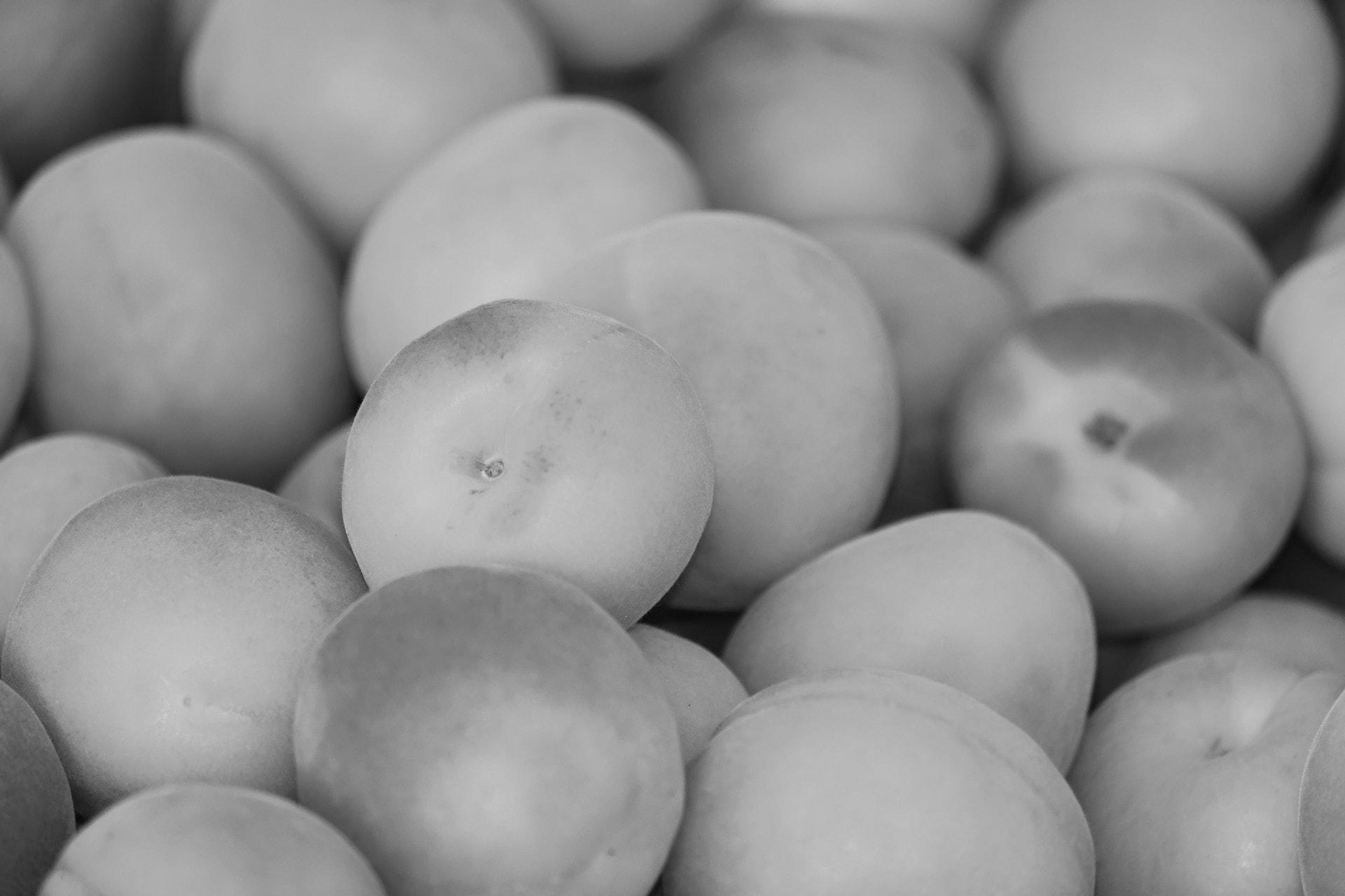abrikozen-zw