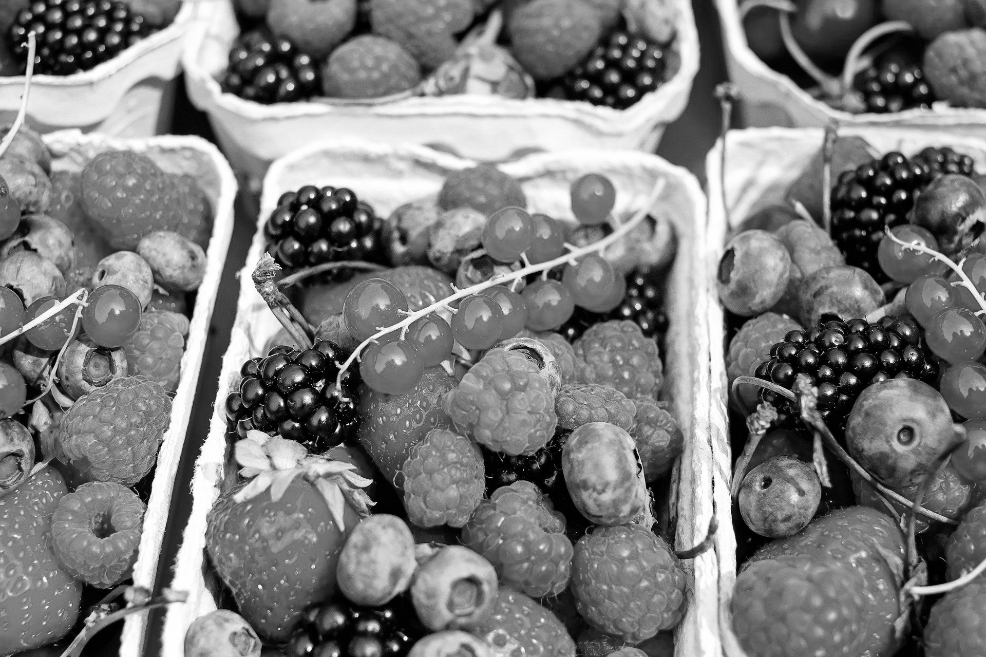 berries-1546125_1920 zw
